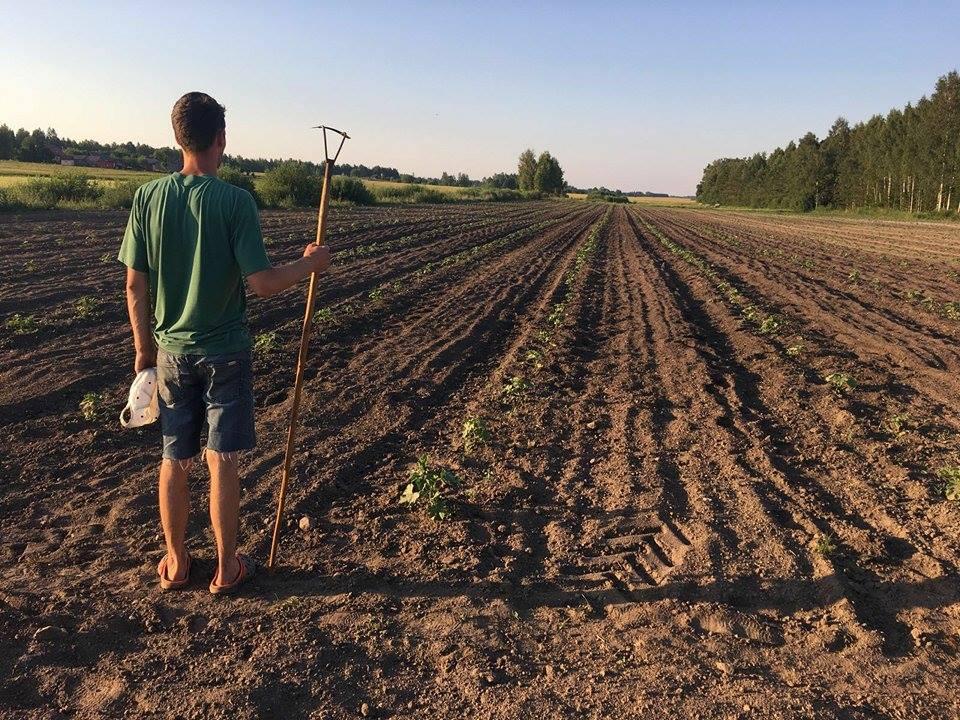 jaunais lauksaimnieks