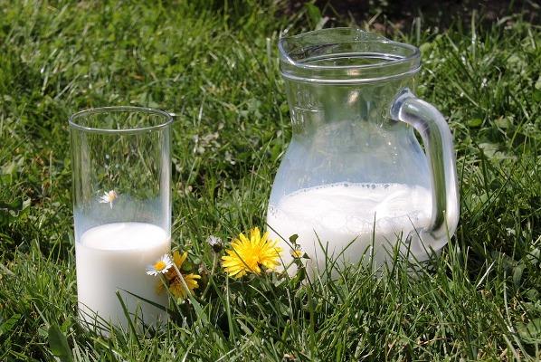 milk-1377564_960_720
