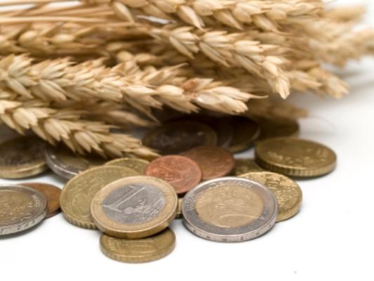 grain-and-money